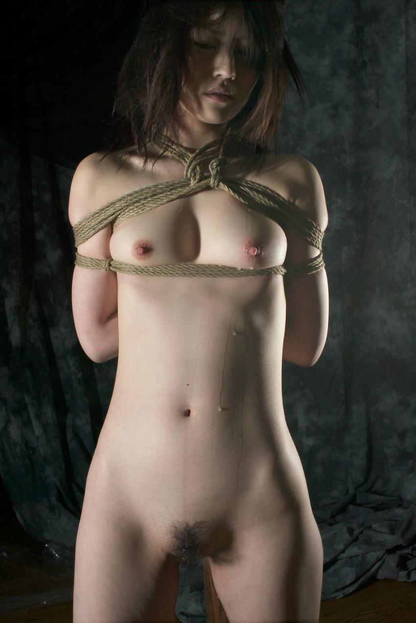 【拘束エロ画像】拘束された身動きのとれない女を陵辱する興奮! 29
