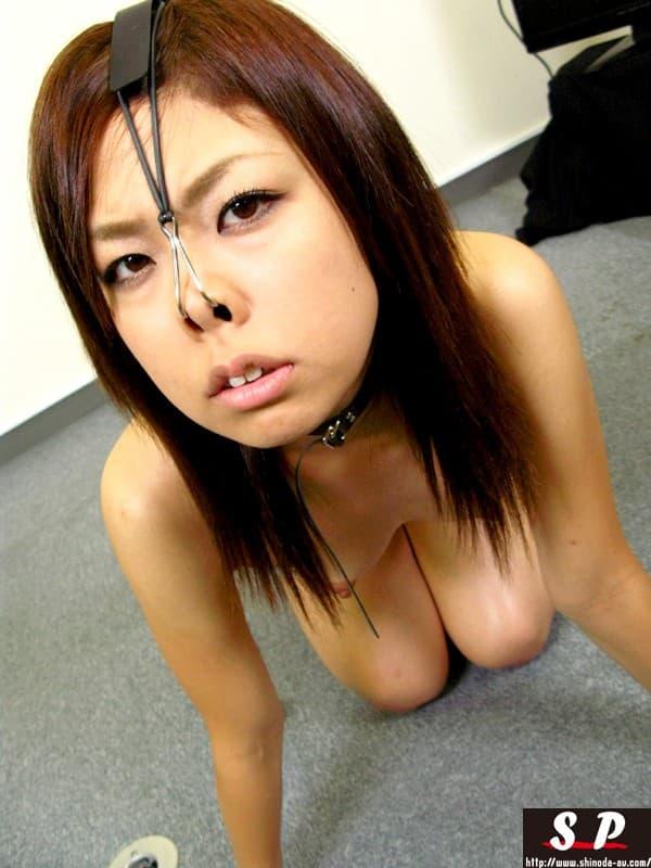 【鼻フックエロ画像】美女に鼻フック装着させておブスな状態でイラマチオや調教セックスすると興奮する事に気が付いてしまった鼻フックのエロ画像集!ww【80枚】 77