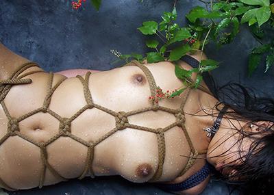 【SM緊縛エロ画像】食い込むロープ!女の子をロープで緊縛してみた結果!